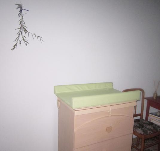 25 cassettiera con fasciatoio  in corridoio