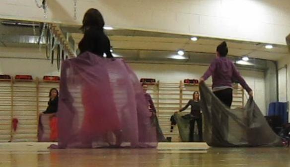 a danza  velo viola
