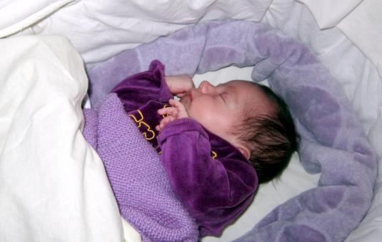 7 marzo 2013 Viola in culla