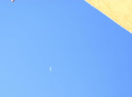 1 Luna di mattina