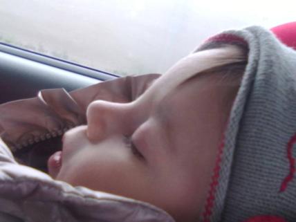 27.12.2013 Viola dorme in auto