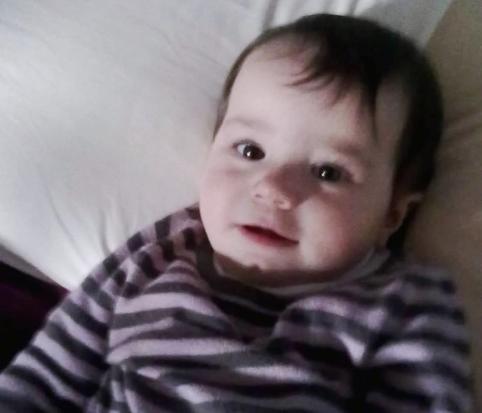 8.1.2013 Viola undici mesi