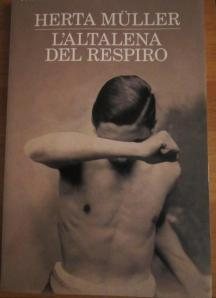 libro in regalo dal babbo