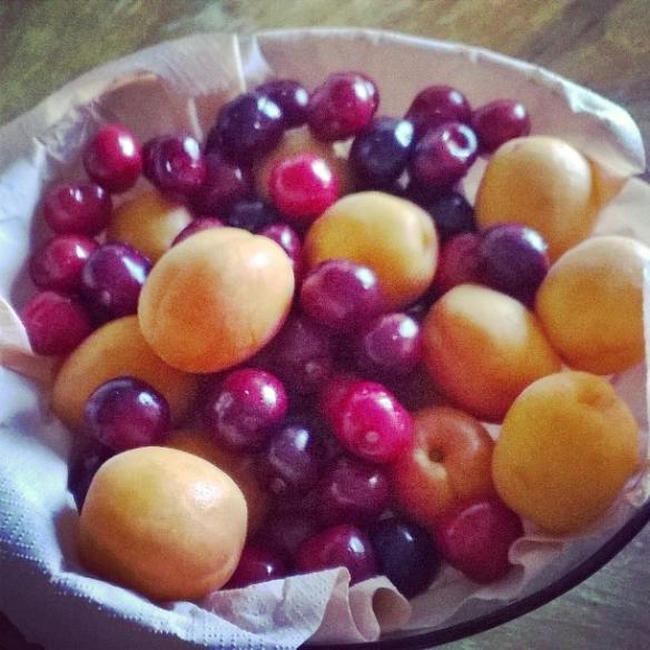 fine maggio frutta a cena