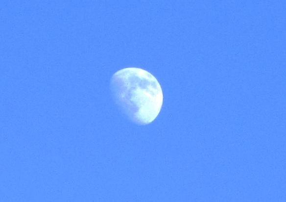 8 Luna come un viso