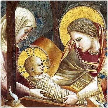Natività Giotto