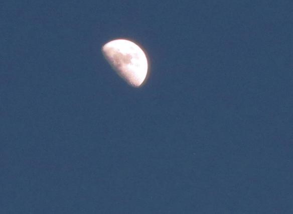sabato 28 Luna