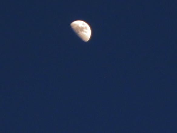 sabato 28 Luna nella sera