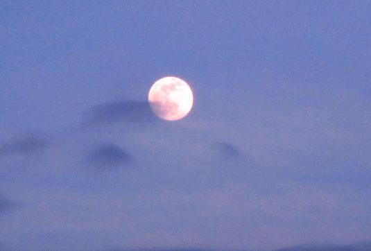 2 Luna1