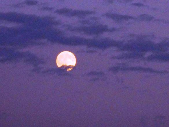 30.7.2015 Luna3