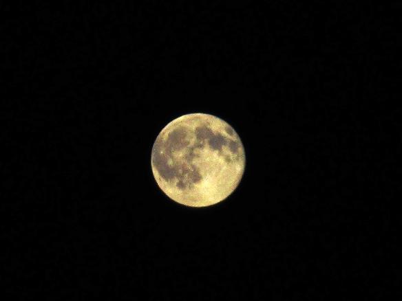 31.7.2015 Luna6