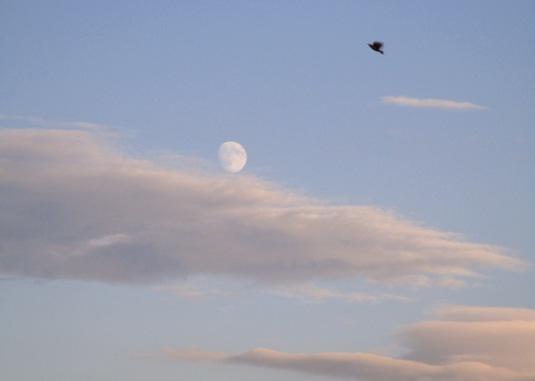 25.9,2015 Luna e volo