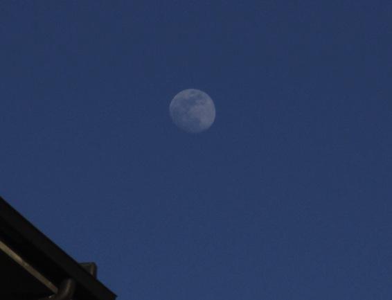 19.4.2013 Luna