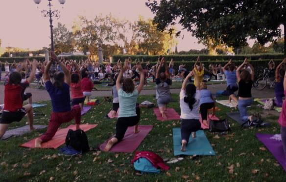 22 agosto 2016 ci sono a far yoga alle Cascine