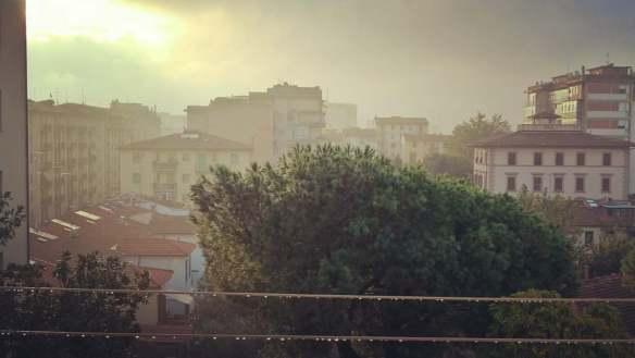 2-ottobre-2016-dopo-la-notte-di-pioggia-la-dolcezza-del-sole-al-mattino