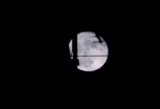 15-novembre-2016-luna2