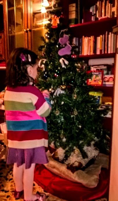 15-novembre-2016-viola-e-albero-in-fieri