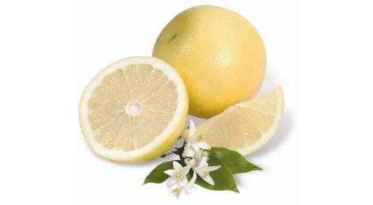 pomplemo-white-grapefruits
