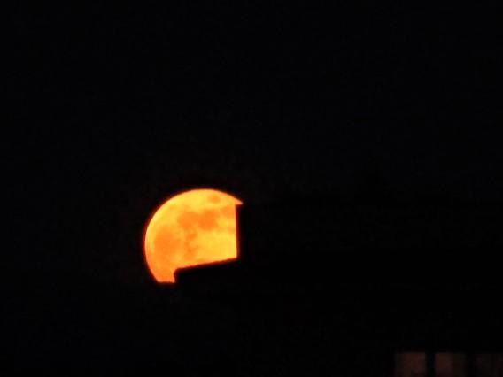 7 maggio 2020 Luna1